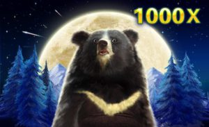 The only bear you'll be happy to see – Formosa Bear