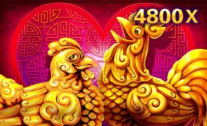 JDB Slot Game:GOLD ROOSTER LOTTERY.